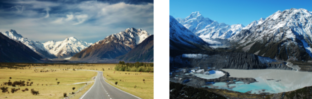 New Zealand5
